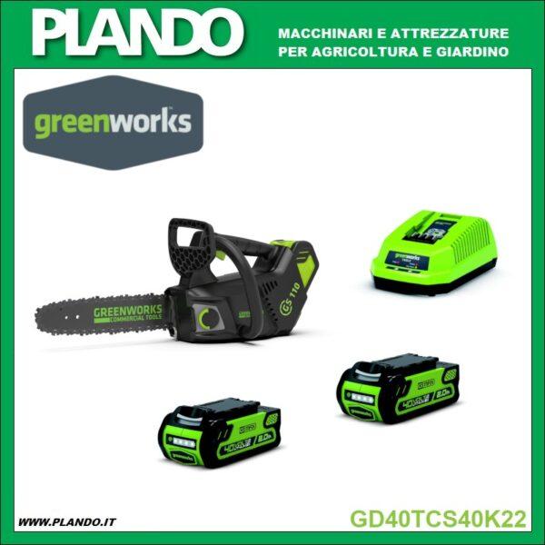 Greenworks MOTOSEGA A BATTERIA 40V 25 cm CON MOTORE DIGIPRO CON 2 BATTERIE 2Ah E CARICABATTERIE
